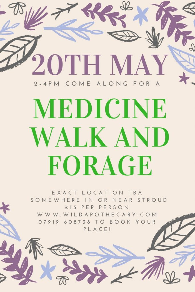 May 20th Wild Medicine Walk